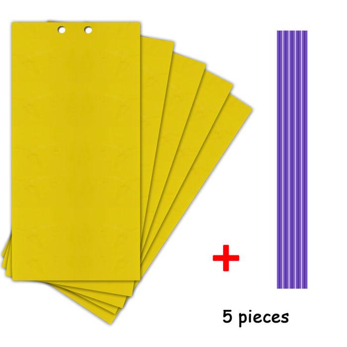 Fly Sticky Trap Double-Sided (5pcs)