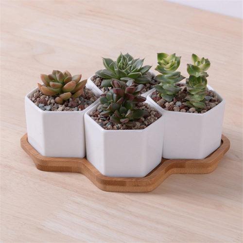 Small Planters Succulent Pots Set (4pcs)