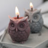 Silicone Candle Mold Owl Design