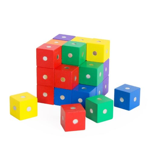 Magnetic Wooden Blocks Set (10Pcs)