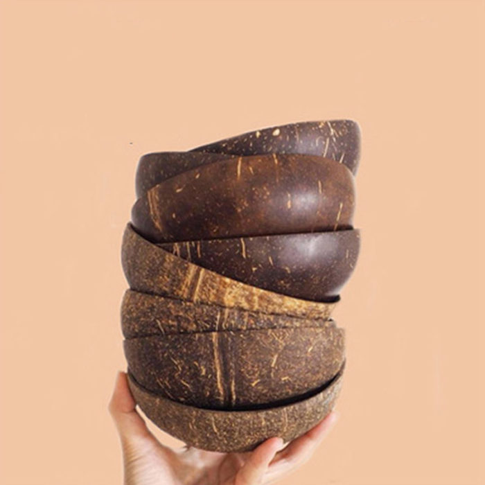 Coconut Shell Bowl Rustic Wood Craft