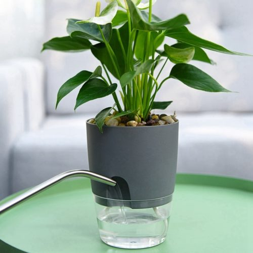 Self Watering Planter Indoor Flower Pot