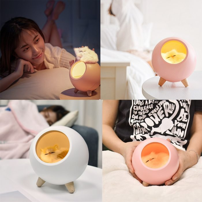 Cat Night Light Rechargeable Table Lamp