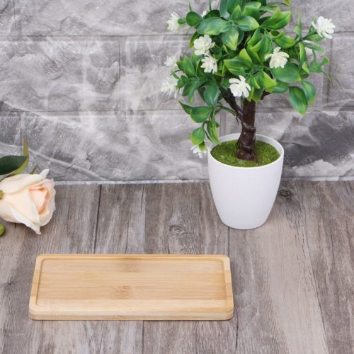 Plant Pot Tray Wooden Saucer