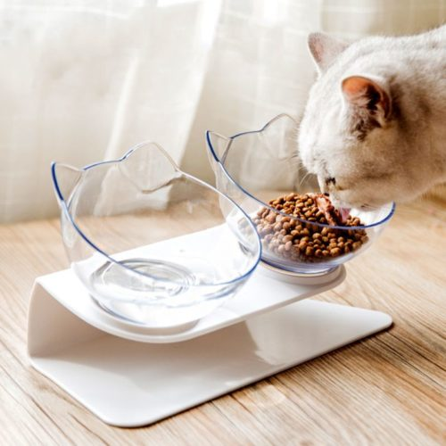 Raised Pet Bowls Food and Water Bowls (2Pcs.)