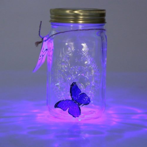 Butterfly Jar LED Novelty Decor