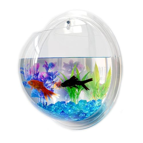 Hanging Fish Bowl Plant Wall Aquarium