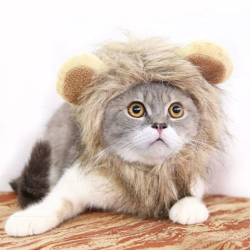 Lion's Mane for Cats Cute Wig