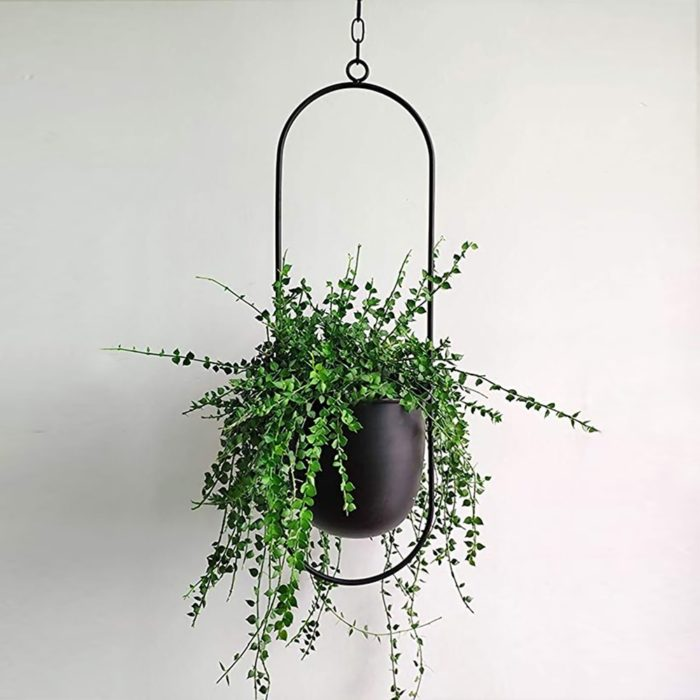 Metal Indoor Plant Hanger