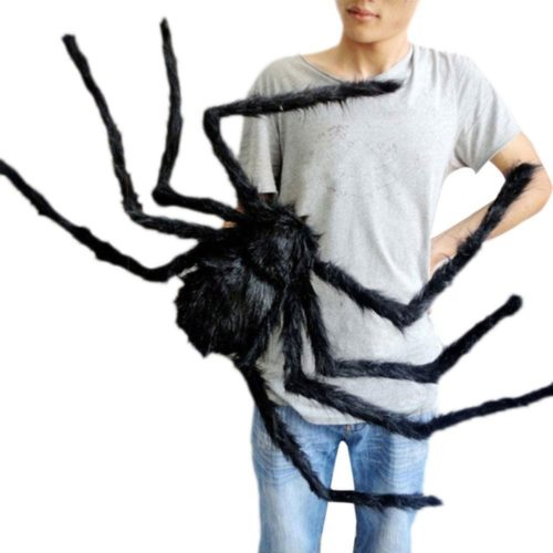 Giant Halloween Spider Red-Eyed and Hairy