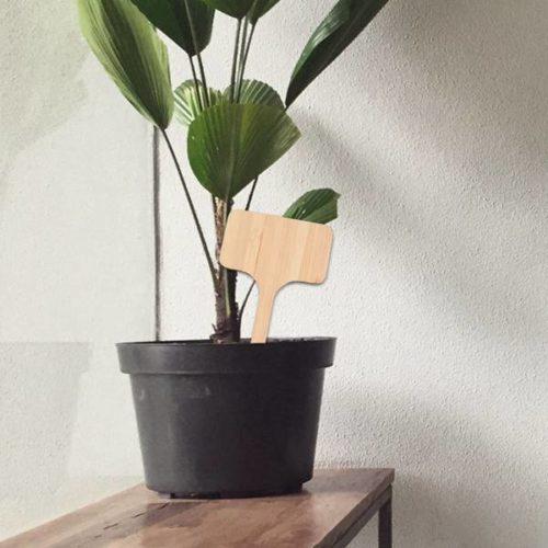 Wooden Plant Labels Garden Tags (50pcs)