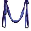 Light purple-purple