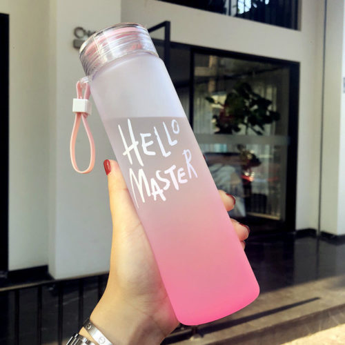 Plastic Reusable Water Bottle 500ml Container