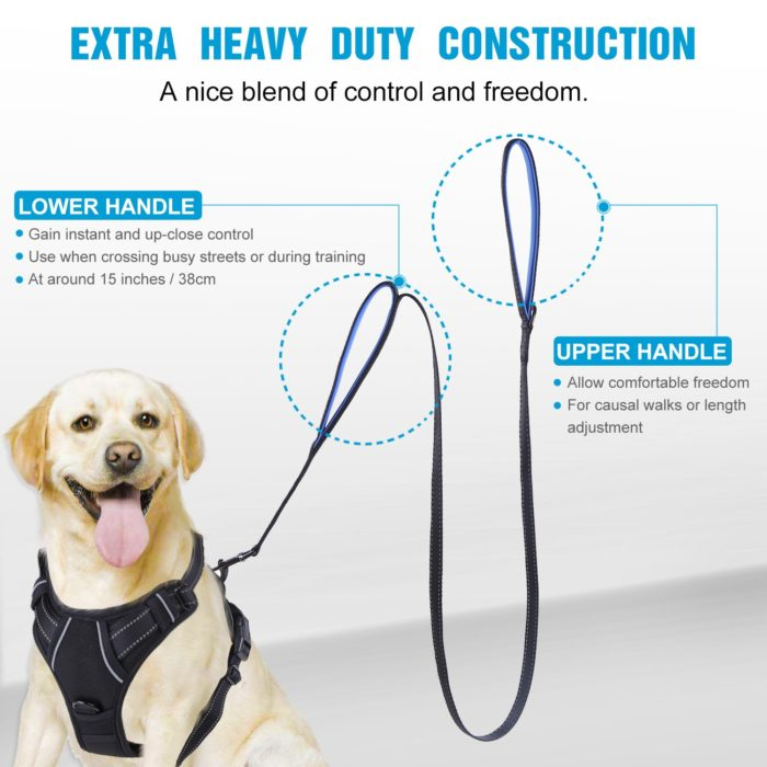 Double Handle Dog Leash Pet Accessory