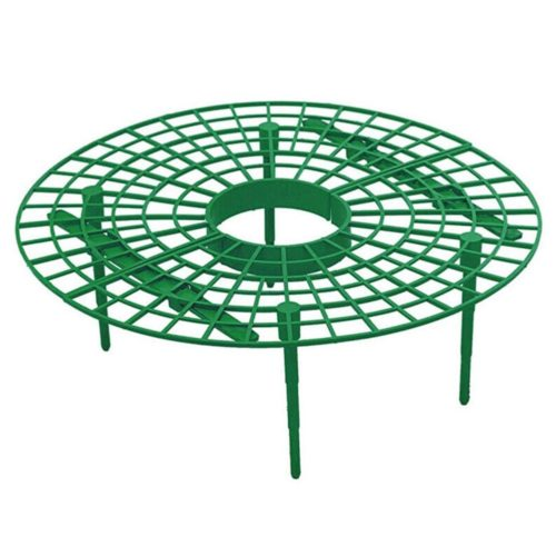 Strawberry Support Plastic Plant Frame
