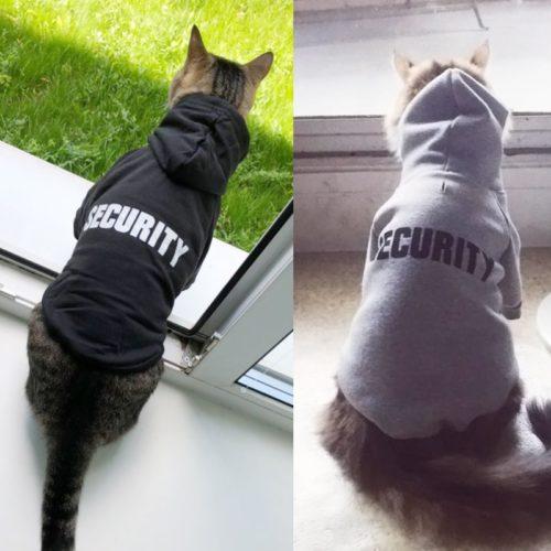Cat Jacket Stylish Hoodie