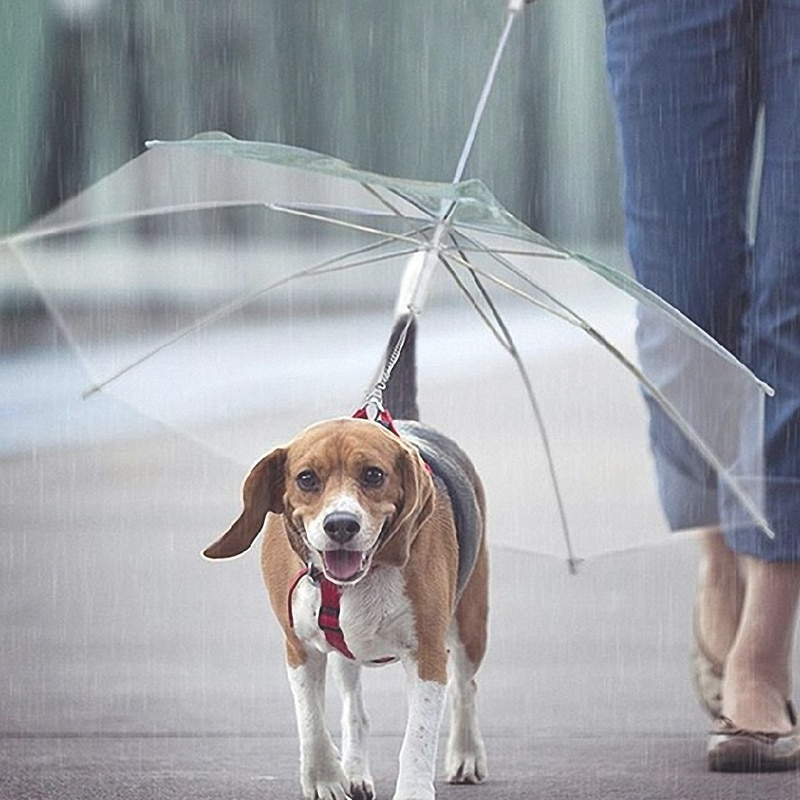 Transparent Pet Umbrella Portable Built-in Leash Puppy Umbrella Cat Raincoat Small Dog Cat Rain Gear with Dog Leads Keeps