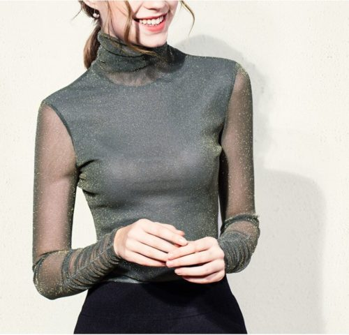 Ladies Turtle Neck Top Transparent Long Sleeve