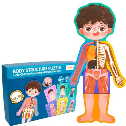 Anatomy Toy Educational Puzzle