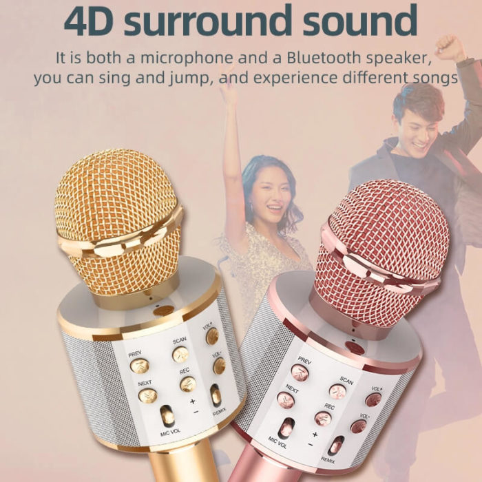 Portable Microphone 3-in-1 Speaker