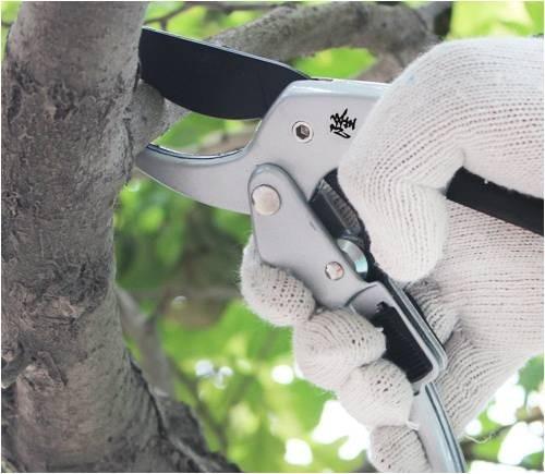 20cm Ratchet Plant trim horticulture Hand Shear Orchard pruning pruner cut secateur Shrub Garden Scissor tool anvil Branch