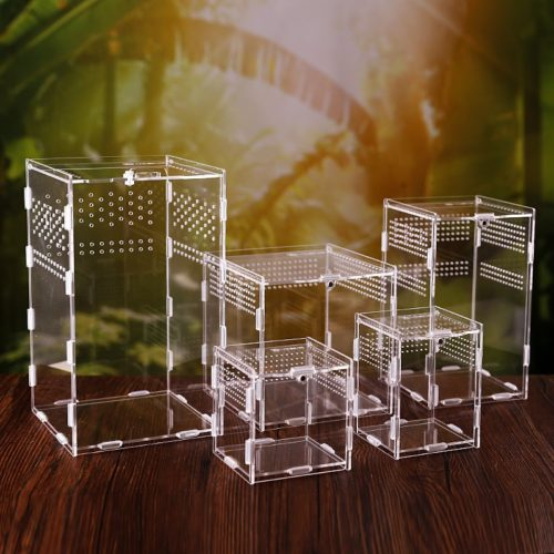 Acrylic Tarantula Enclosure Pet Box