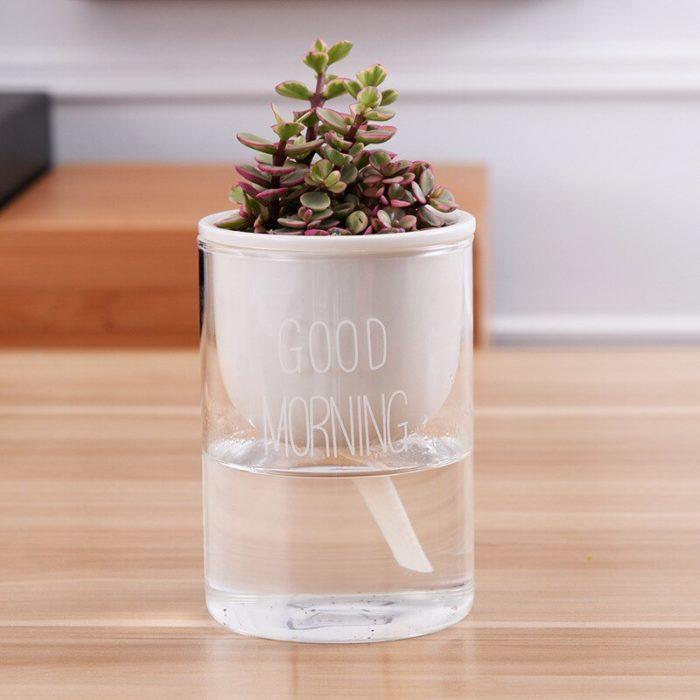Ceramic Self Watering Pot