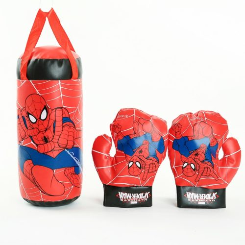 Kid's Punching Bag and Gloves
