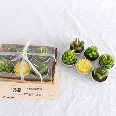 Succulent Candles Set (6pcs)