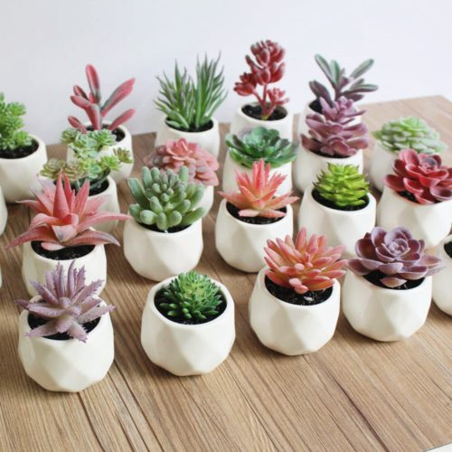 Mini Fake Plants Artificial Succulents