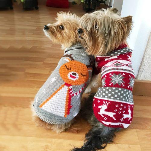Dog Christmas Sweater Crochet Costume
