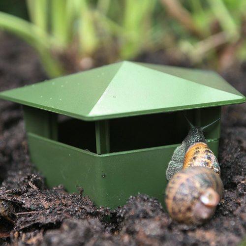 Slug and Snail Trap Plastic Box