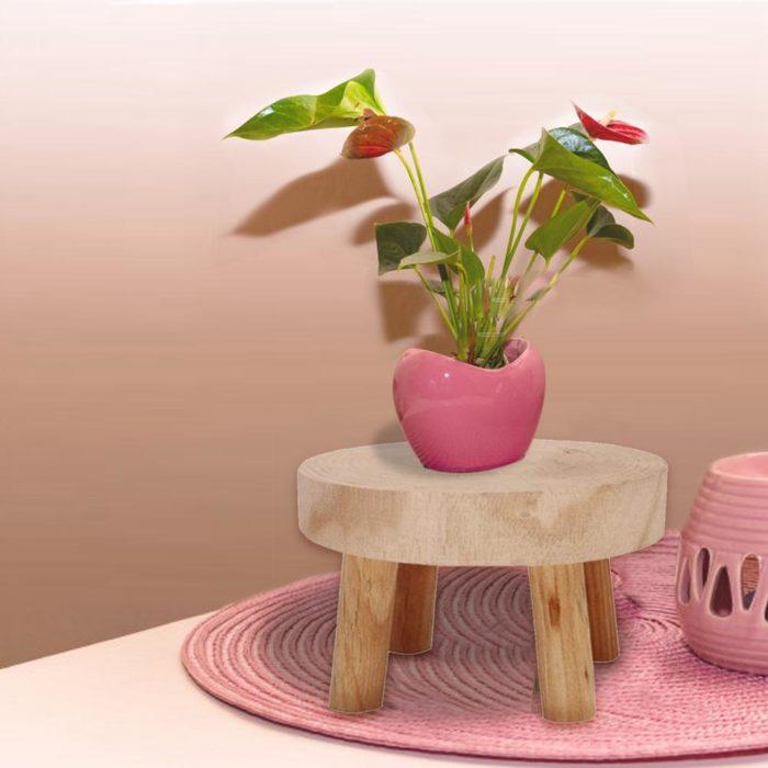 Plant Stool Wood Garden Flower Stand