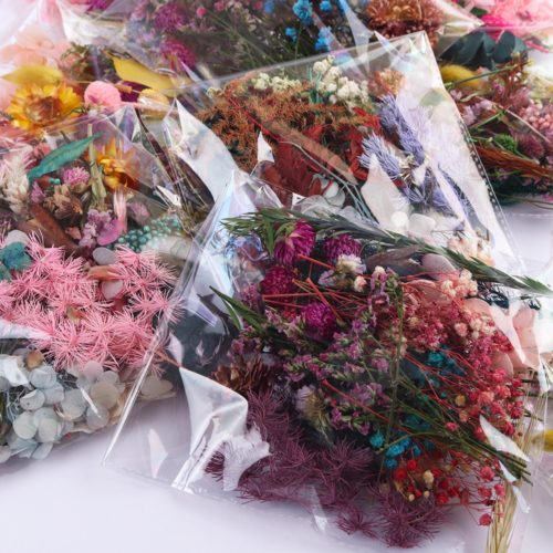Real Dried Flowers DIY Supplies (20g)
