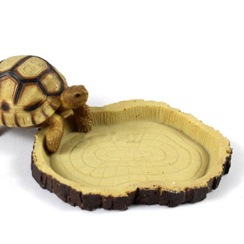 Reptile Bowl Resin Feeding Dish