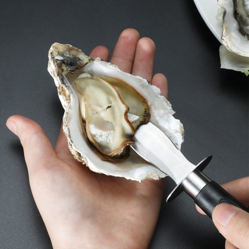 Scallop Knife Stainless Steel Opener