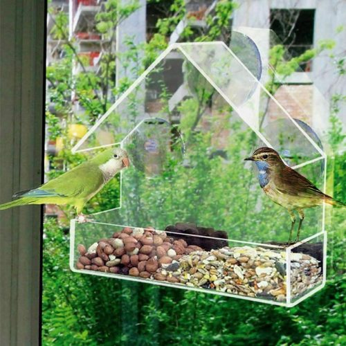 Clear Birdhouse Window Shelter Feeder