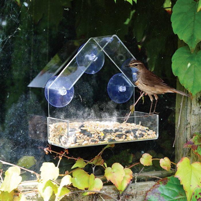 Clear Birdhouse Window Shelter Feeder