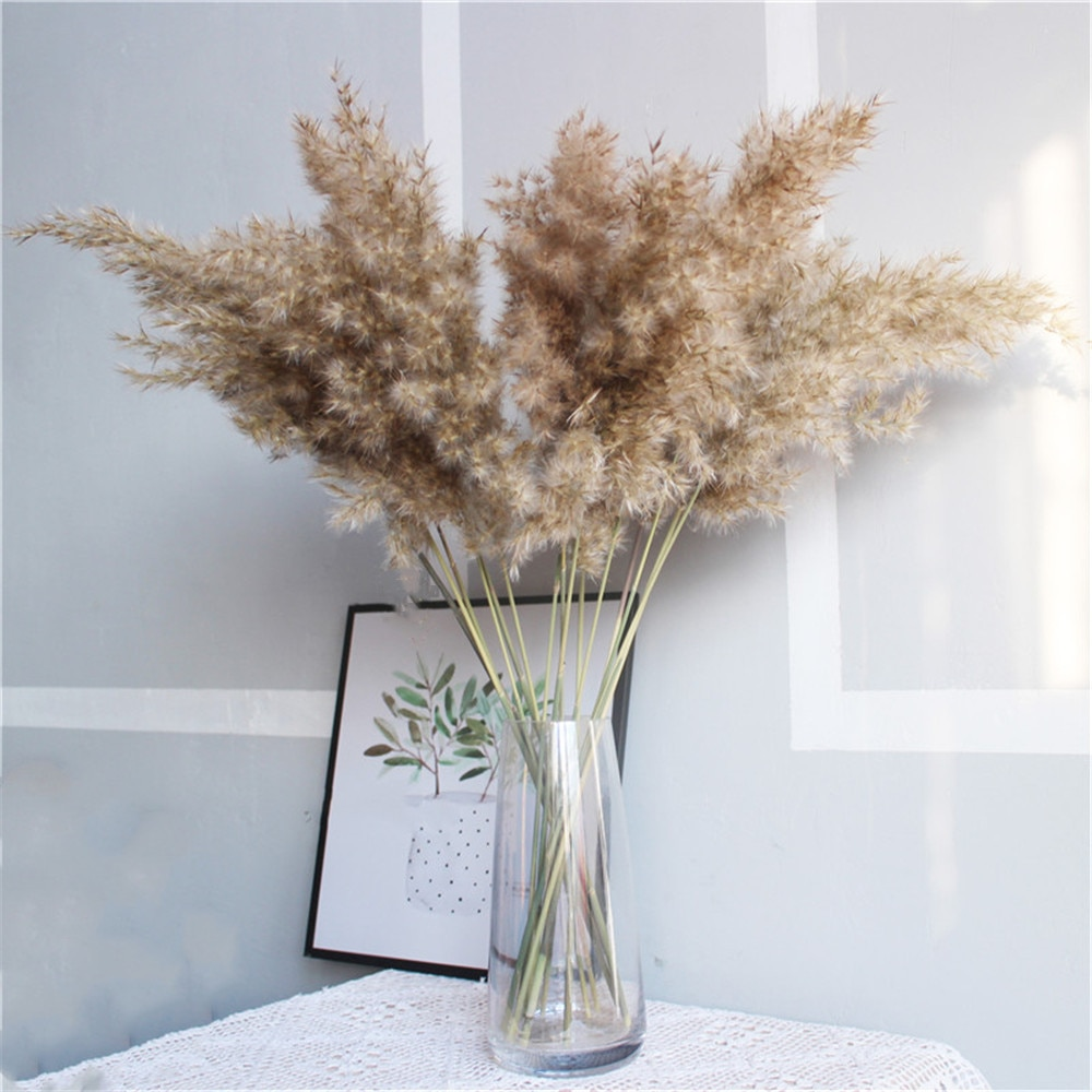 Dried Pampas Grass Rustic Decoration 21 pcs   Life Changing Products