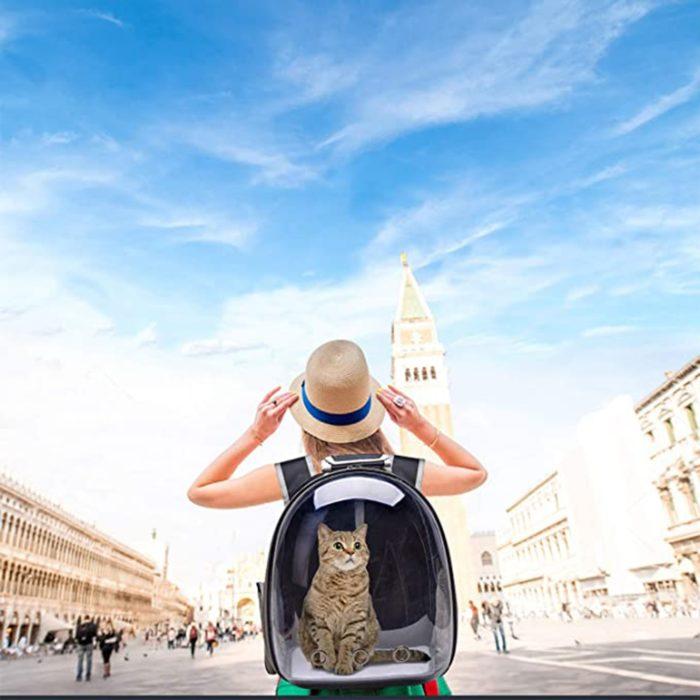 Pet Travel Backpack Transparent Pet Carrier Bag
