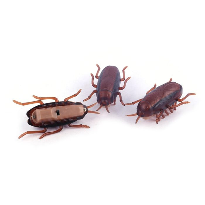 Cockroach Toy Battery-Operated Running Roach