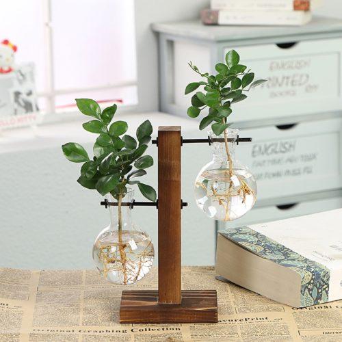 Hydroponic Vase Plant Terrarium