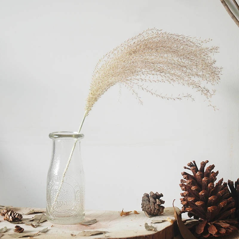 pampas grass decor plants home wedding decor dried flowers bunch feather flowers natural phragmites tall 20-22'' plastic vase