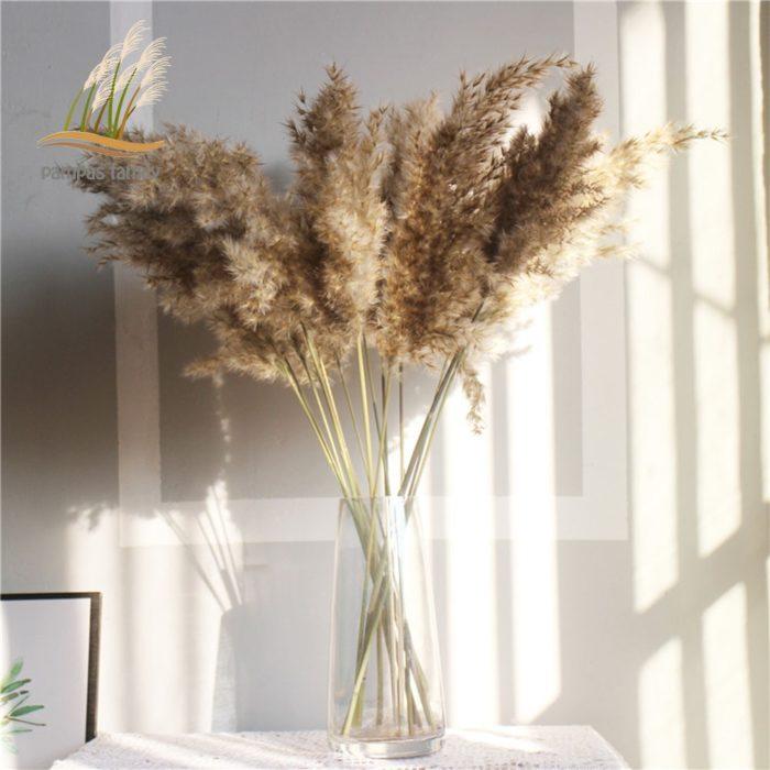 Dried Pampas Grass Decor