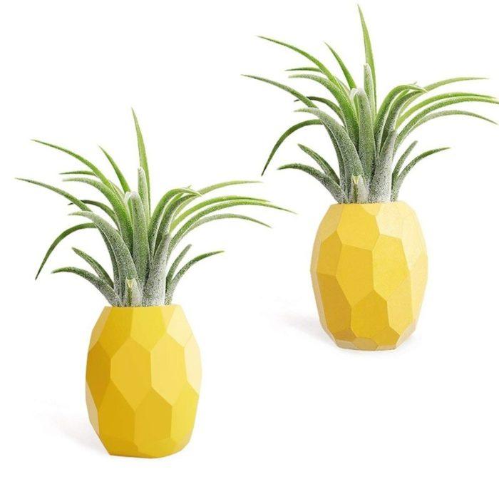 Resin Air Plant Pineapple Plant Pot