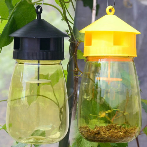 Hanging Plastic Bee and Wasp Trap