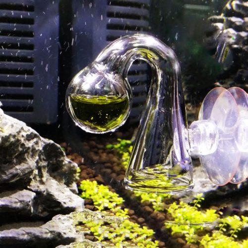 Glass Co2 Indicator Aquarium with Suction