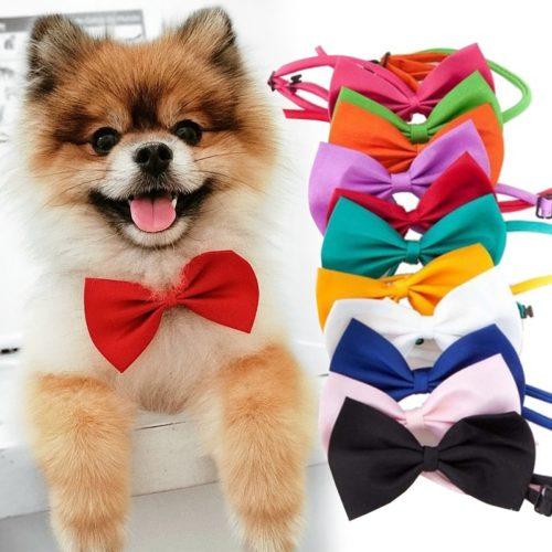 Dog Bowtie Pet Accessory