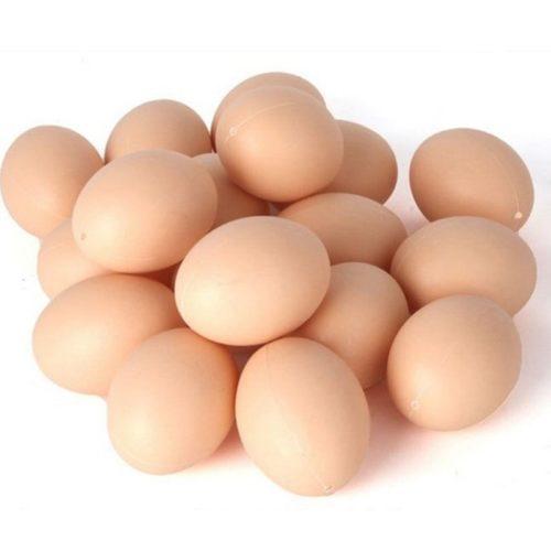 Hatching Simulation Dummy Eggs (5pcs)