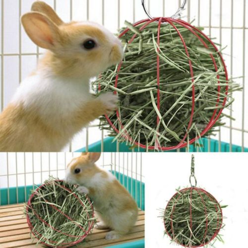 Wire Hay Ball Feeder